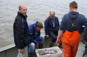 Vissers van de kust aan het werk met visstand onderzoek